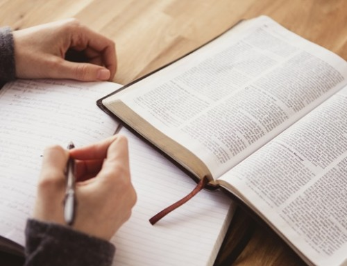 New Scripture Study Groups