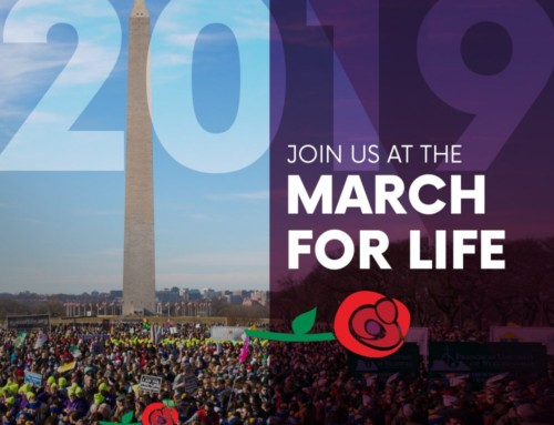 March For Life: January 17